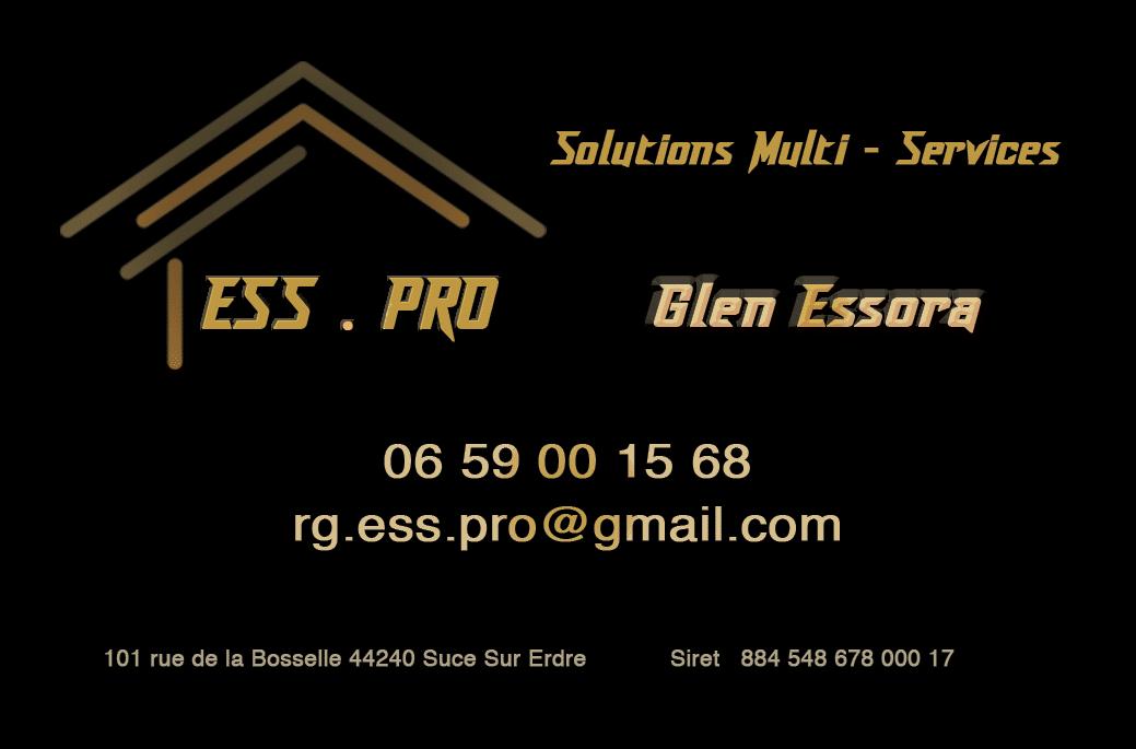 ESSPRO logo
